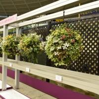 国際バラとガーデニングショー 宿根ガーデン ブログ