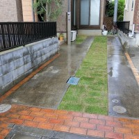 宿根ガーデン やどねガーデン 植栽 芝生 さいたま市南区