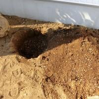 やどねガーデン 宿根ガーデン 土壌改良