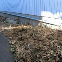 雑草対策 防草シート敷き さいたま市 草加市 蓮田市