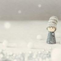 埼玉 大雪 積雪